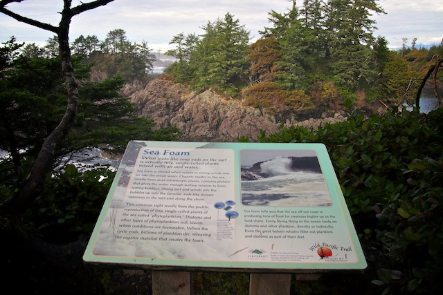Wild Pacific Trail, Ucluelet