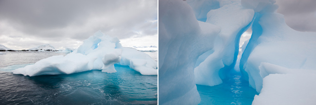antarctica-blog-45