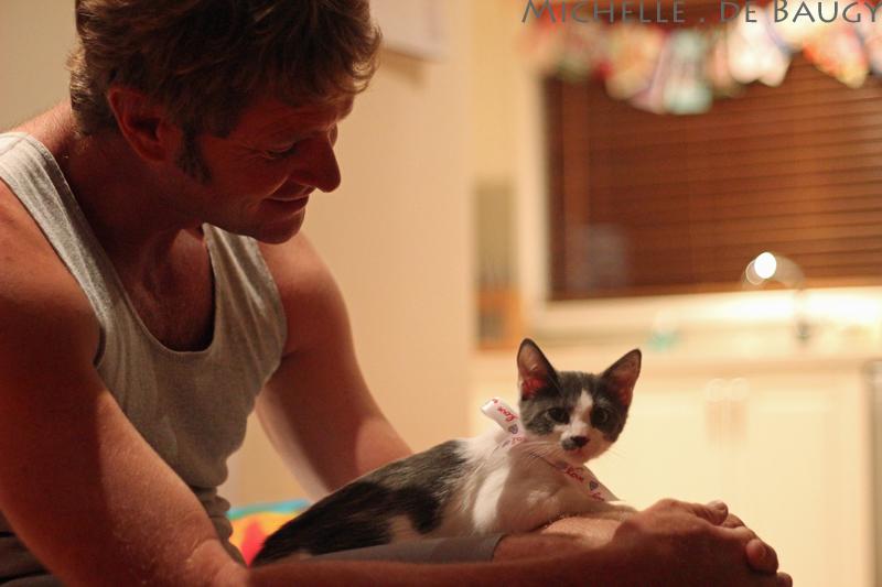 kittenblog004