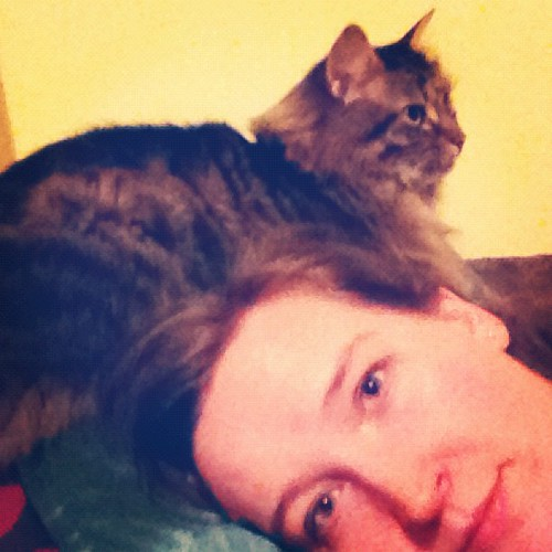 Yes, that is a cat on my head. He's purring like a pneumatic drill too! >_< 43/366