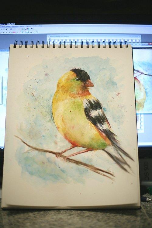 02-13-bird