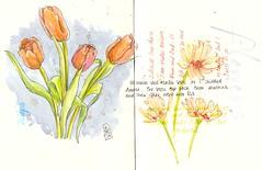 21-01-12c by Anita Davies