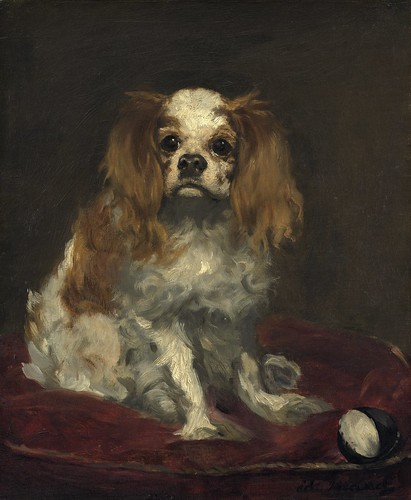 Edouard Manet - A King Charles Spaniel [c.1866] by Gandalf's Gallery