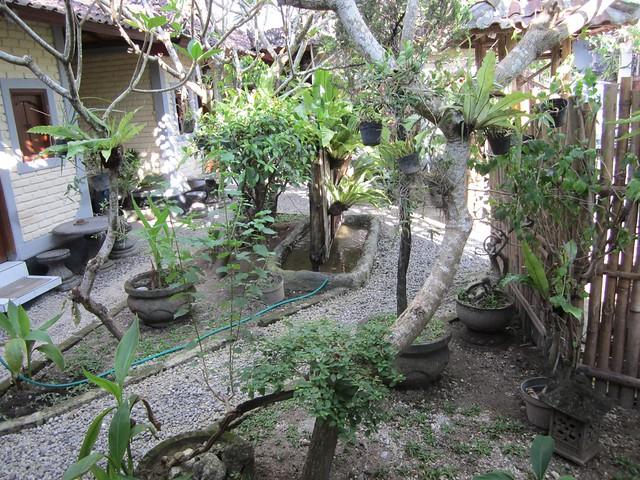 dana courtyard