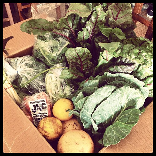 My @JBGorganic CSA box, packed to the gills.