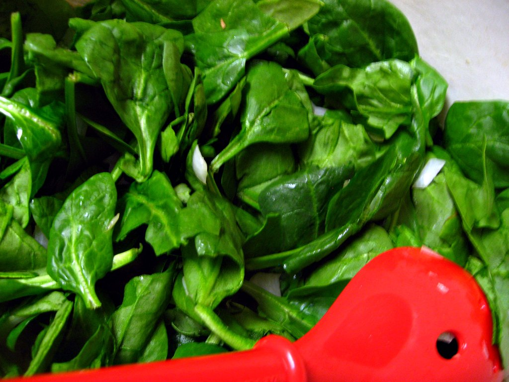 spinach prior to wilting