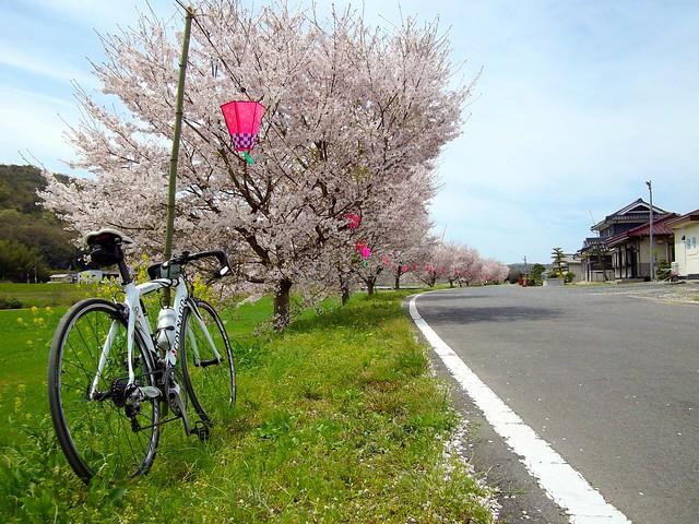 小田川にて