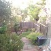 Small photo of Backyard and composter