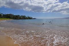 2012-02-10 02-19 Maui, Hawaii 251 Wailea, Ulua Beach