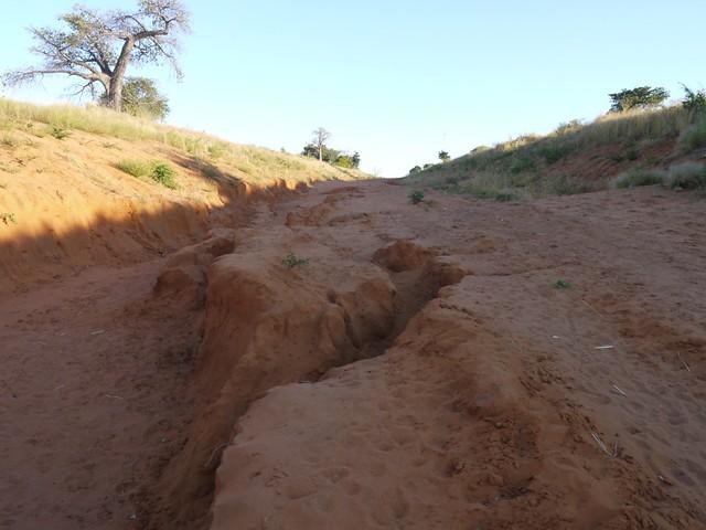 Road to Mongu (6)