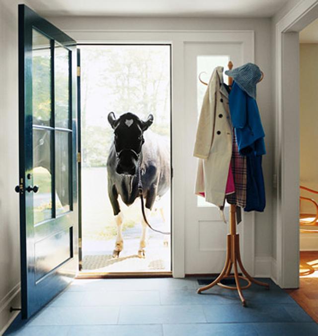 entryways foyers-10