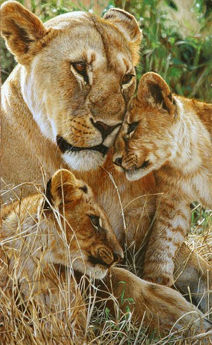 """'Time for a Cuddle' oil on board 17¾"""" x 16¾"""