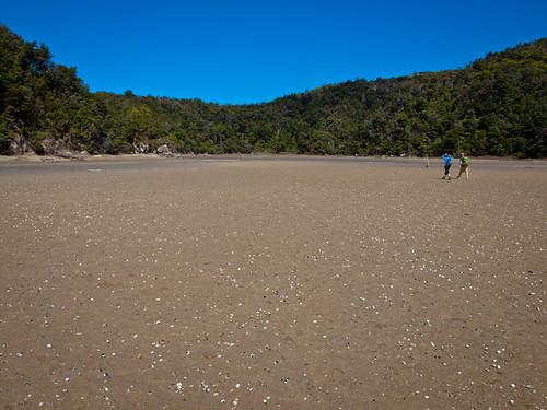 Parque Nacional de Abel Tasman 23