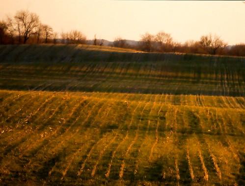 winter ohio field lines march backyard shadows view farm sony alpha 2012 topography a230 fairfieldcounty ruralohio stoutsville