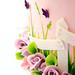 Spring! by Bella Cupcakes (Vanessa Iti)