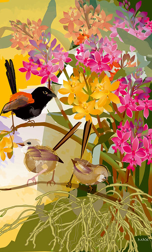 Wrens in Epidendrum