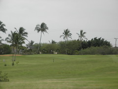 Hawaii Prince Golf Club 029