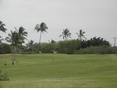 Hawaii Prince Golf Club 029