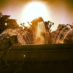 Look into the light.  Golden Gate Park, San Francisco, CA.