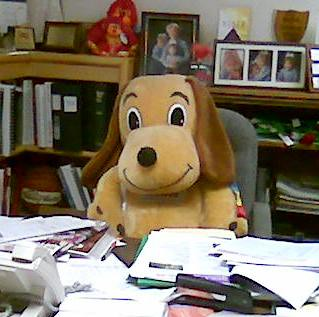 Holidog at Will's desk