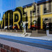 Small photo of Mirth, Marfa