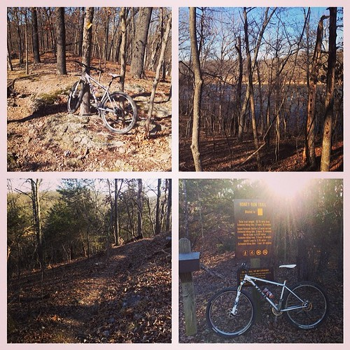 Honey Run trail, Lake of the Ozarks State Park. #mtb #missouri