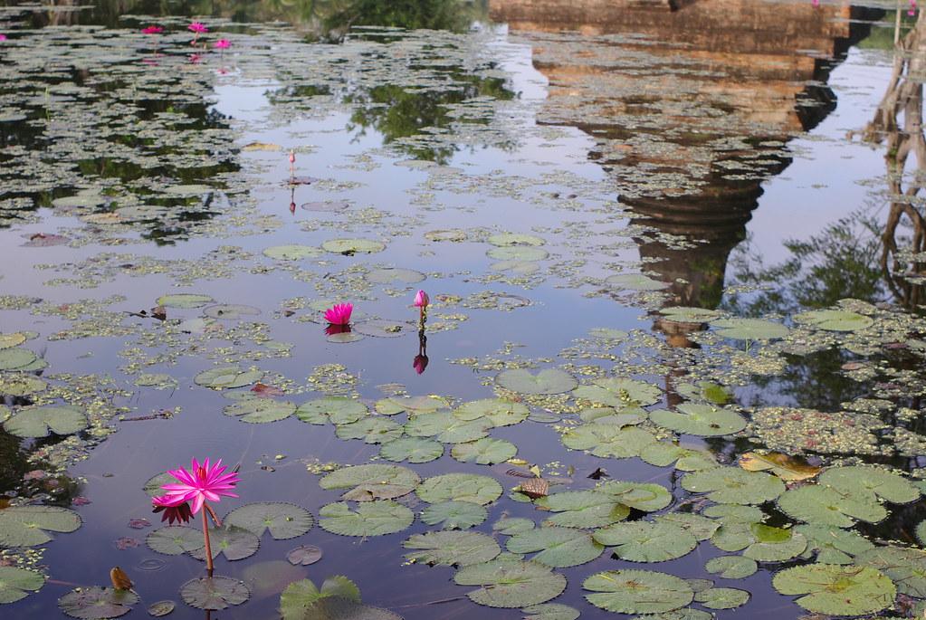 美麗的泰國