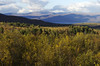 Day 8: Autumn ends in Abisko by Gregor  Samsa