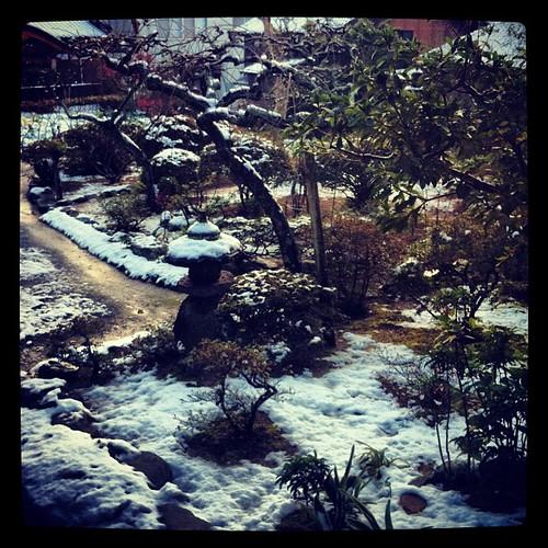 雪、もう溶け出しててつまらん