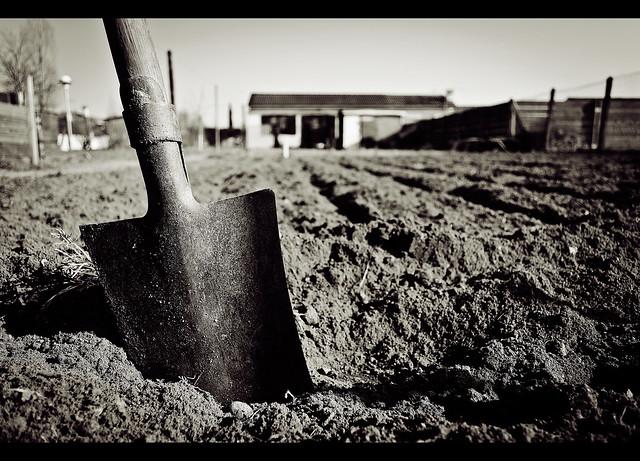 Premiers Travaux Du Jardin Flickr Photo Sharing