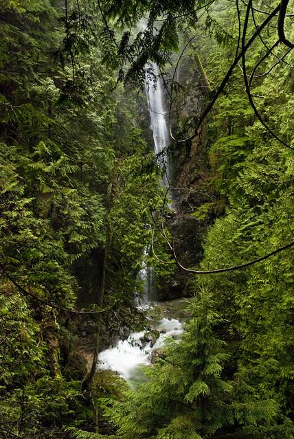 Waterfall in Lynn Canyon Park