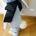 Baby Blue Bunny standing 570pix