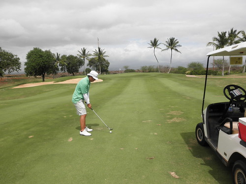 Hawaii Prince Golf Club 266
