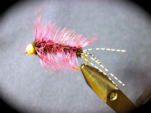 Steelhead Stonefly nymph