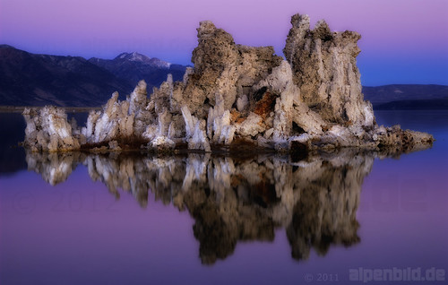 Purple Hour at Mono Lake