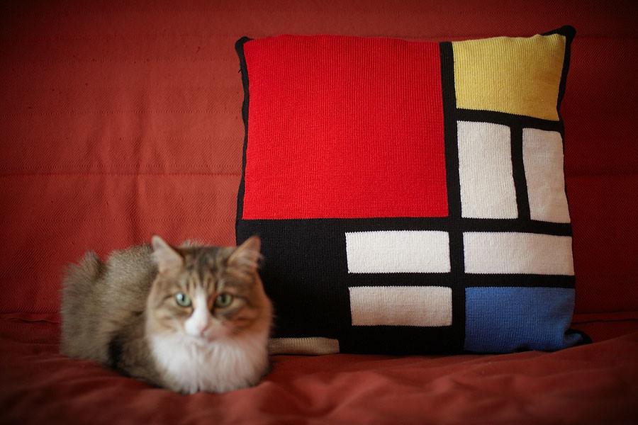 Focal pillow