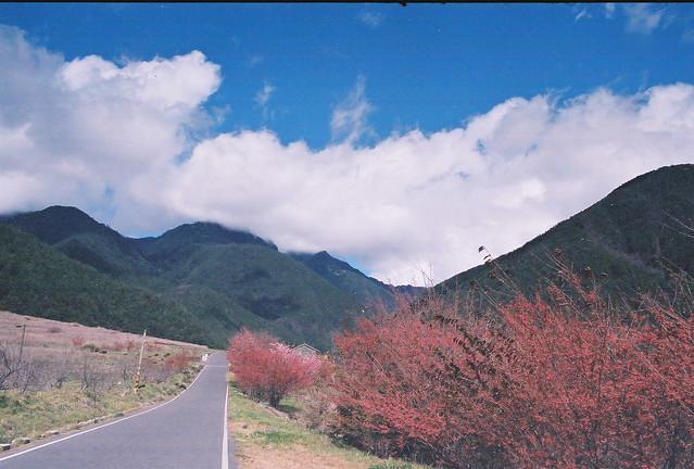 武陵正夯 (A 28 F2)