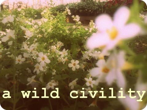 a wild civility