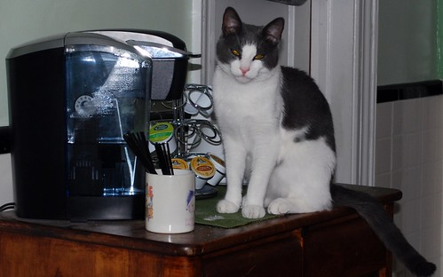 Tesla and the Old Keurig