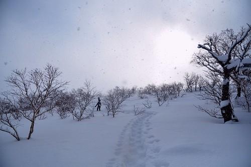 02/24 富良野岳バックカントリー
