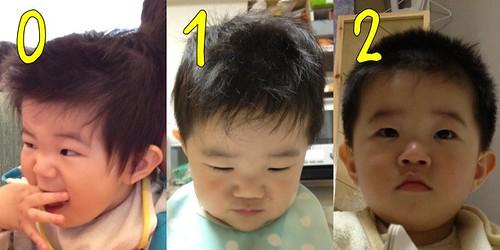 とらちゃんの散髪の進捗(2012/4/15-16)