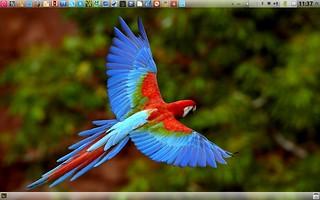 Debian GNU/Linux en Macbook Pro