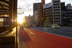 にほん2012