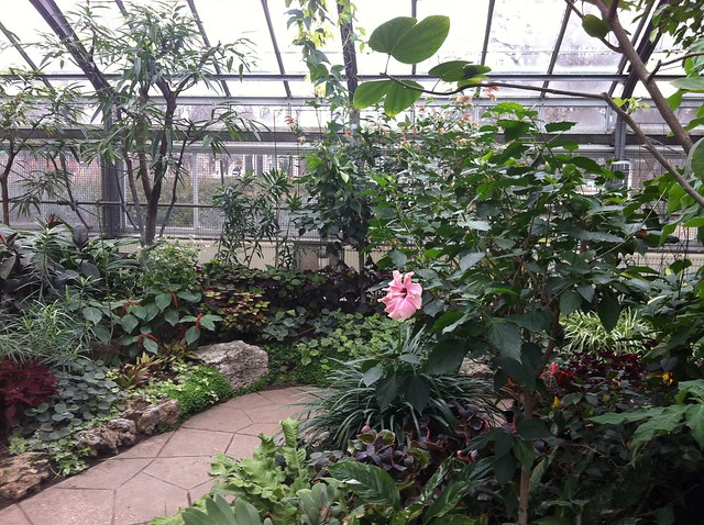 Allan Gardens Conservatory, Toronto