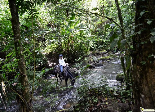 6950202957 b0c1507e48 Horseback Riding Tour to Waterfalls in Arenal, Costa Rica