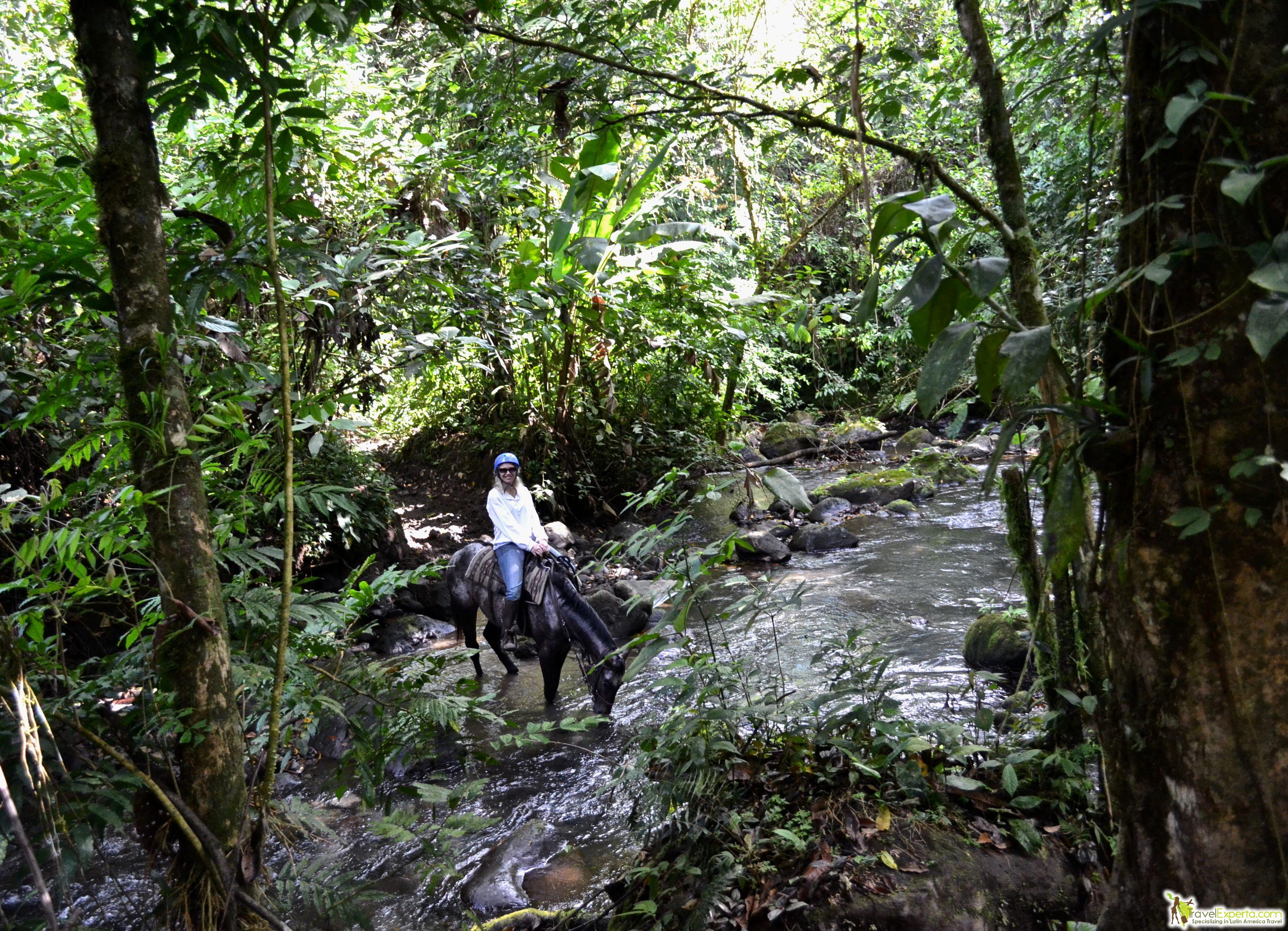 Horseback Ride to a Waterfall in Arenal, Costa Rica