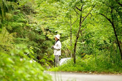 2010福山春綠