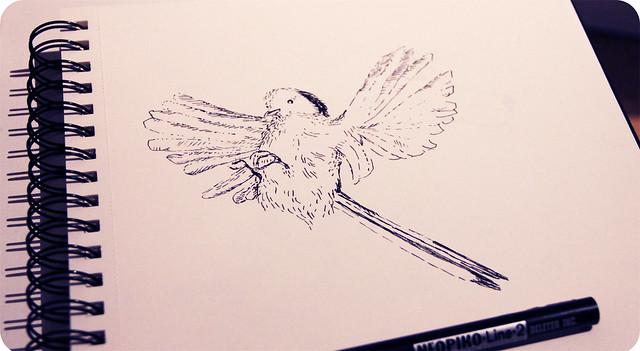lintu