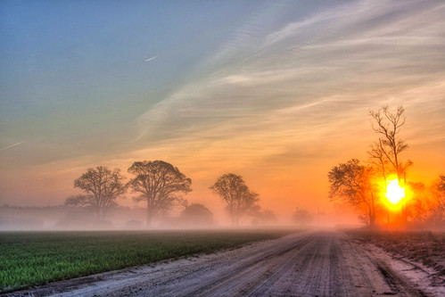 road morning blue trees sun mist tree field misty fog clouds sunrise canon early spring md lowlight cloudy country foggy maryland easternshore shore salisbury dirtroad eastern backroad hdr highdynamicrange atmospheric countryroad sunray eastcoast delmarva easternshoreofmaryland earlymorningmist wicomico canon50d countryrd shoredelmarvaeastern
