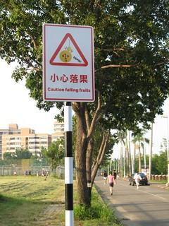 20101007-小心落果-1
